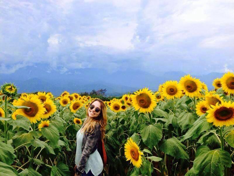 Chilliwack Sunflower Festival 2018