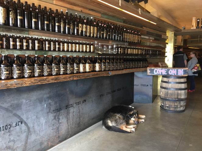 dog brewery Vancouver