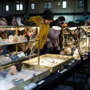 vancouver gem and mineral show 2019