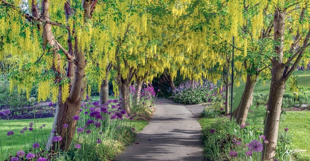 botanical garden Vancouver
