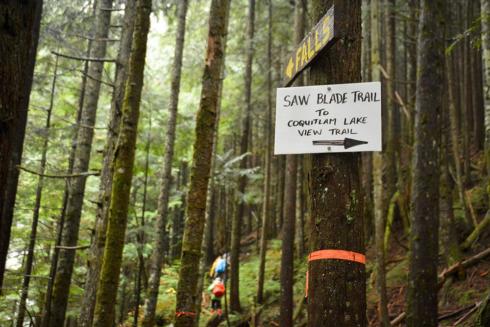 4 Short & Sweet Hikes for Spring Near Vancouver