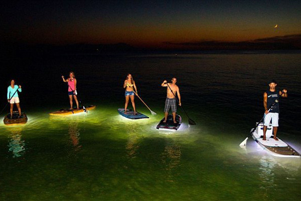 Light the Night Standup Paddleboarding Tour in Vancouver