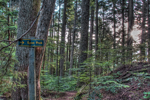 Trail sign in Lynn Headwaters Regional Park in North Vancouver, BC