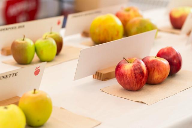 apple festival vancouver