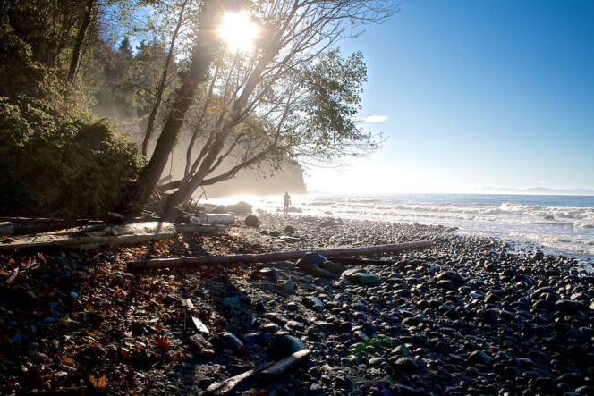 Wreck Beach in Vancouver's Pacific Spirit Park