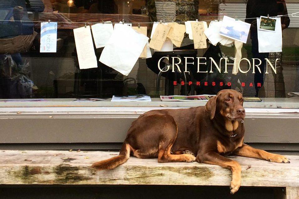 Greenhorn Cafe Vanocuver