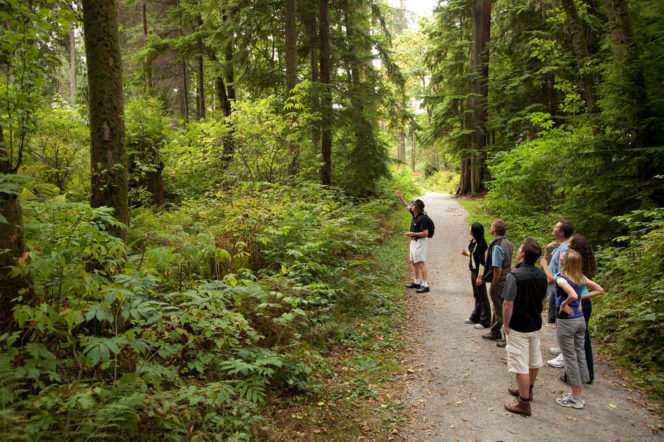 Exploring nature in Vancouver's Stanley Park