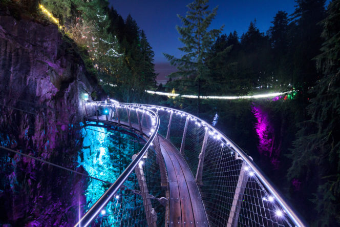 Capilano Canyon Lights in North Vancouver