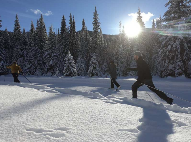 Cross country skiing at Manning Park