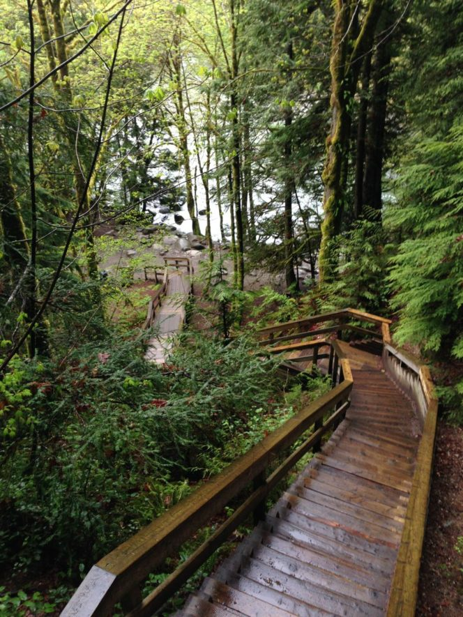 Stairs on a trail near Lynn Creek in North Vancouver