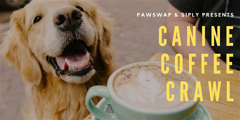 canine coffee crawl vancouver