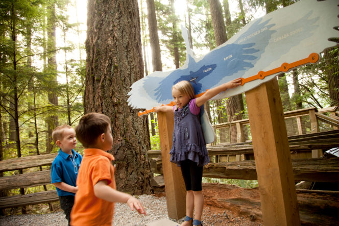 Children playing at the Capilano Suspension Bridge in North Vancouver