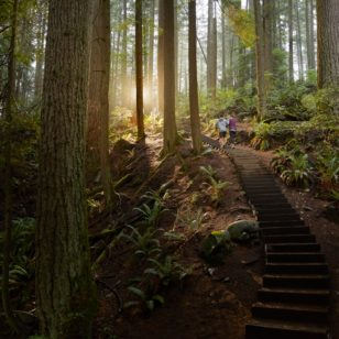 People hiking up stairs on the Grouse Grind in Vancouver