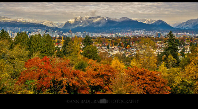 The view of Vancouver in fall from Queen Elizabeth Park