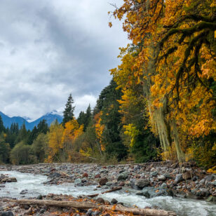 Fall colours along the Four Lakes Loop Trail in Squamish near Vancouver, BC