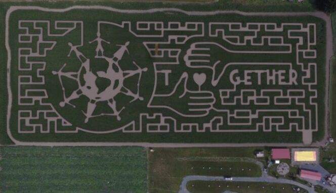 Aerial shot of the 2020 Chilliwack Corn Maze near Vancouver