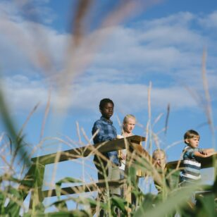 Children on a viewing platform at the Chilliwack Corn Maze near Vancouver