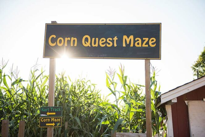 The entrance to the Corn Quest Maze at Taves Family Farms near Vancouver