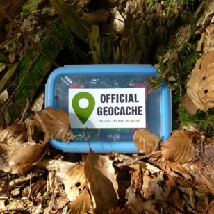 A geocache surrounded by leaves