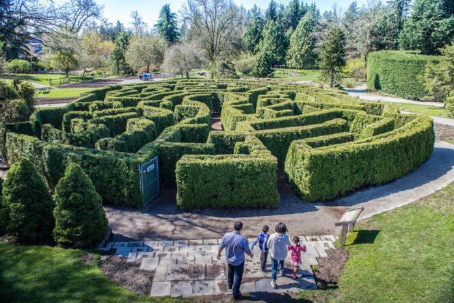 Family exploring the hege maze at Van Dusen Botanical Garden in Vancouver