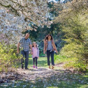 VanDusen Garden in spring in Vancouver