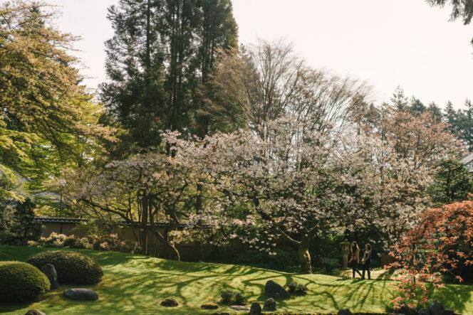 Nitobe Memorial Garden in Vancouver
