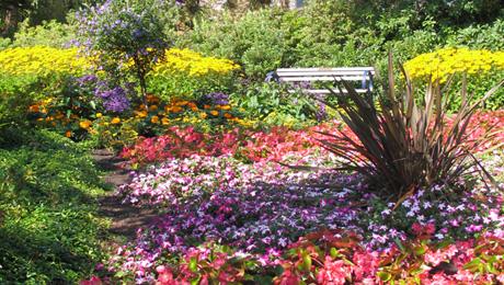 Flowers in Century Gardens in Deer Lake Park, Burnaby