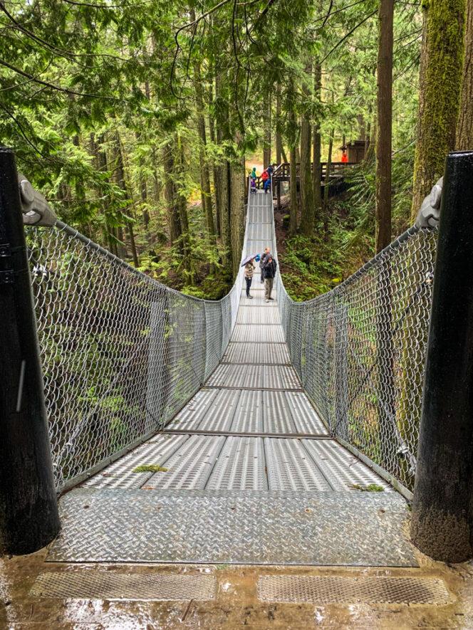 Suspension bridge at Cascade Falls in Mission