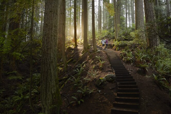 Hikers on the Grouse Grind