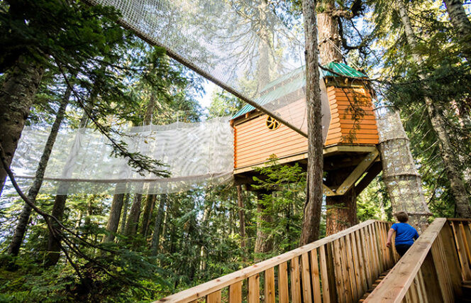 Kids Canopy Adventure at Grouse Mountain