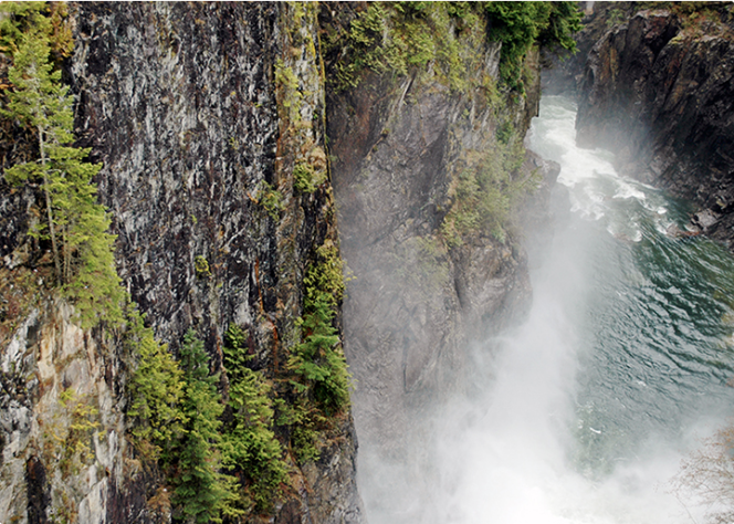 View of Second Canyon from Cleveland Dam in Capilano River Regional Park