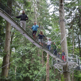 People walk on an elevated bridge at the Greenheart Treewalk at the UBC Botanical Garden in Vancouver