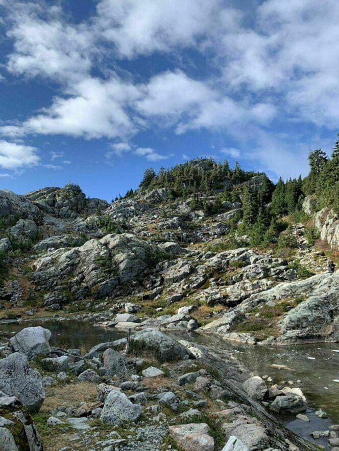 Mount Seymour trail