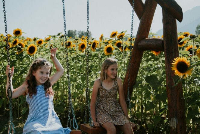 Children on swings at the Chilliwack Sunflower Festival