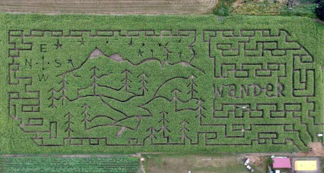 2021 Chilliwack Corn Maze