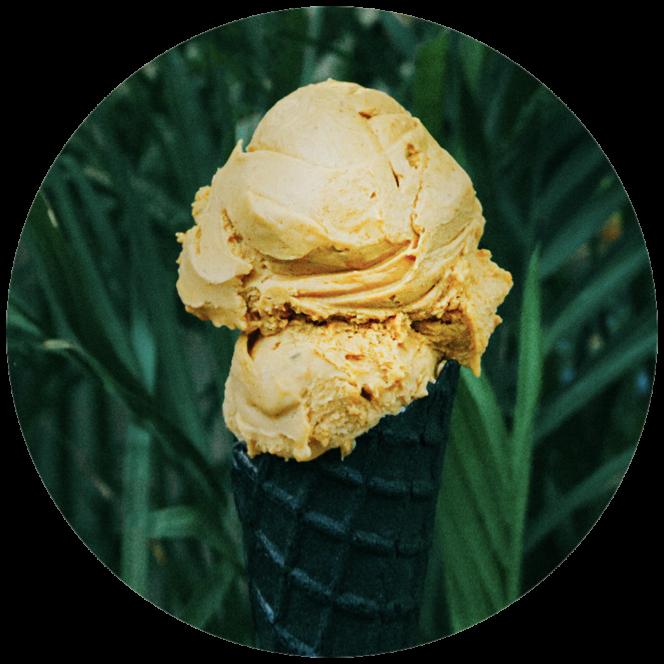 Umaluma pumpkin spice vegan gelato